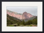Zion National Park by Robert M Worth Jr