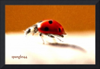 Ladybird with fractals