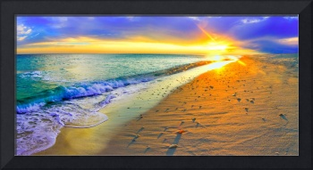 Panoramic Sunset Beach Shells Art Print