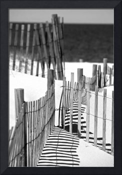 Snow Fence BW
