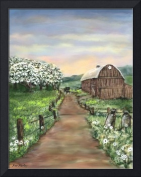 Amish Apple Blossoms