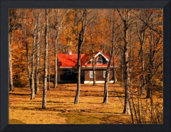 Warm Fall Colors,Isolated Country Cottage,Forest