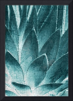 Spiny Leaves