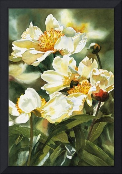 Gold and White Peony