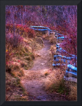 Trail and Fence