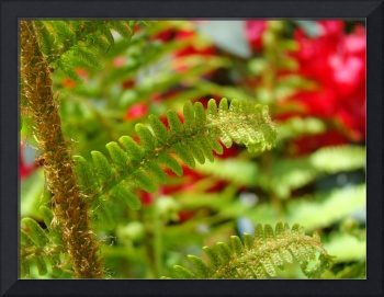 Green Fern Branch Art Red Flowers Garden