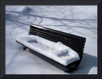 Frozen Bench!