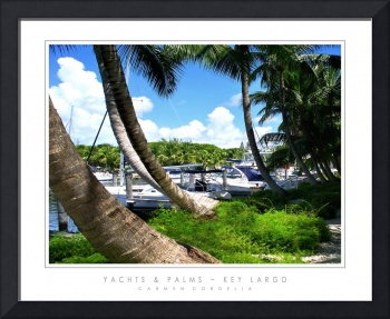 Yachts & Palms - Key Largo, FL