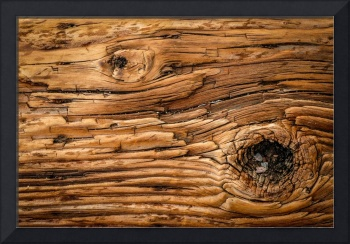 Wood Knot Texture