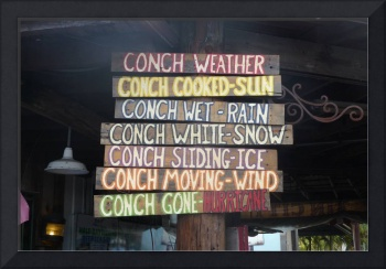 Conch Weather, Dee Oberle