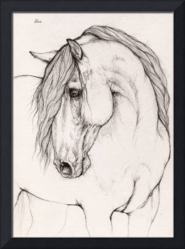 equine drawing