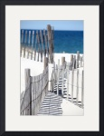 Cold Storage Beach Snow Fence by Christopher Seufert