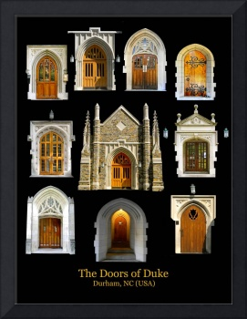 The doors of Duke copia