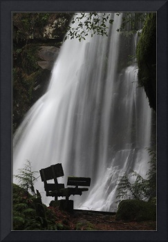 Elk Creek Falls Bench