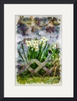 Daffodils Against A Stone Wall by D. Brent Walton