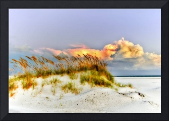 Sea Oats White Sand Purple Sky Art Giclee Prints