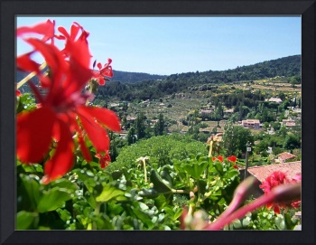 Moustier St Marie View with Red Flowers