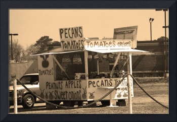 Veggie Stand, Yemassee, South Carolina, 2005