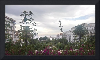 View of the Bay of Algiers