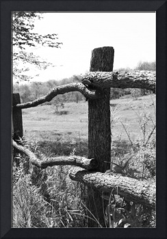 Natures Fence