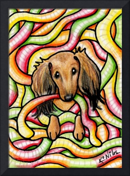 Doxie In Candy Worms