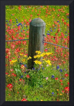 Wildflower Post