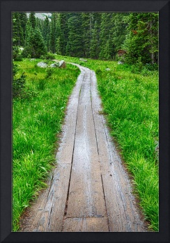 Wooden Forest Path