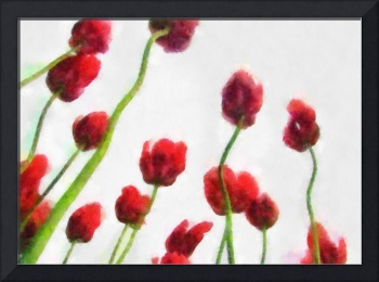 Red Tulips from the Bottom Up 3