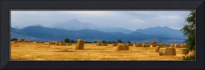 Colorado Agriculture Farming Panorama View