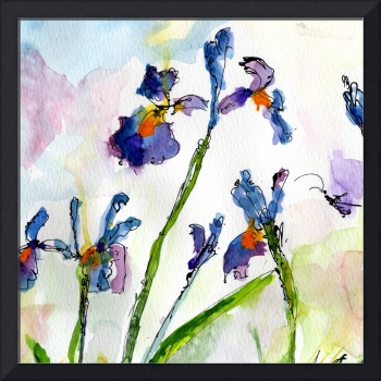 Blue Iris SQUARE Watercolor by Ginette