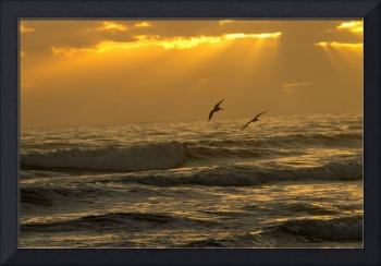 Pelicans flying over ocean waves during sunrise