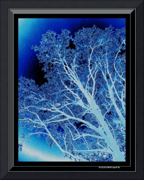 White & Blue Ice Tree