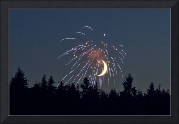 Moon Trees Fireworks