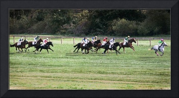 The Horses Along The Home Stretch At Shawan Downs