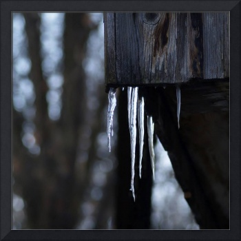 Icicles on old barn
