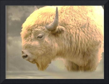 The Great White Buffalo