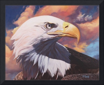 April-bald eagle 16X20
