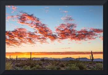 Southwest Desert Colorful Sky