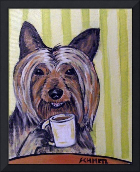 Silky Terrier at the Coffee Shop