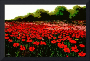 RED POPPIES LANDSCAPES FLOWERS EMERALD ISLE MULTIM