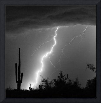 Lightning Bolt Striking in Black and White