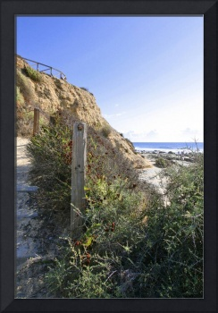 Crystal Cove-36