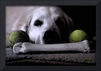 All My Toys: Golden Retriever Taking a Break