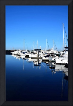 Vertical Marina Reflections 13771