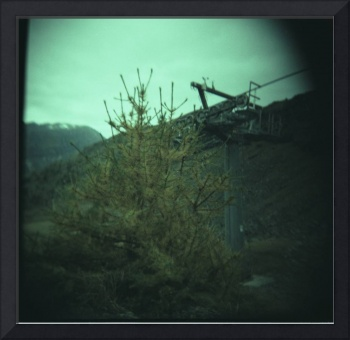 Val d'Ayas--summer and winter