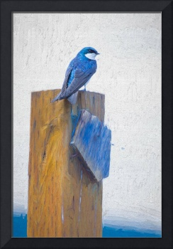 Bluebird Mixed Media Painting Artwork