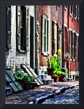 Philadelphia Pa Street With Flower Pots