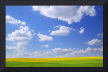Scenic View Of Meadow And Canola Crop