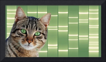 Pet Portraits DNA Art on Canvas - Green