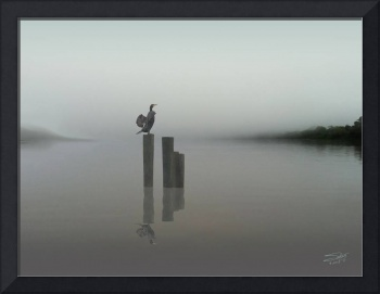 Cormorant in the Morning Fog